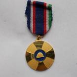 Франция. Медаль братства союзников., фото №2