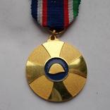 Франция. Медаль братства союзников., фото №3