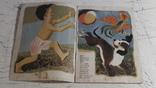 Мяч. Стихи С. Маршака, рисунки А. Пахомова. 1979 г., фото №3