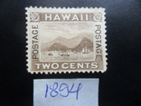 Гавайские острова. Классика. 1894 г. Корабли. гавань МН, фото №2
