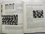 Домашнее приготовление тортов пирожных печенья пряников пирогов Р.П. Кенгис, фото №6