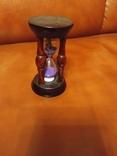 Клепсидра мініатюрна, фото №2