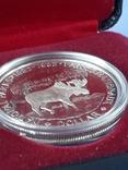 1 доллар, Канада, 1985 год, 100 лет Национальным паркам, серебро, в подарочной коробке, фото №5