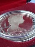 1 доллар, Канада, 1985 год, 100 лет Национальным паркам, серебро, в подарочной коробке, фото №8