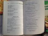 3 книжки Серия Пальчики оближешь 2009 96 с. 15 тыс. экз., фото №6