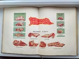 """"""" Книга о вкусной и здоровой пище"""" 1964год, фото №4"""