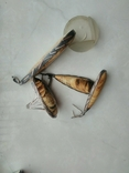 Набор королевский янтарь (ручной работы), фото №7