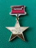 Герой Социалистического Труда копия, фото №3