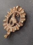 Козерог кулон миниатюра бронза брелок, фото №5