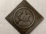 Медаль императорская российская академия1783 год v10 копия, фото №3