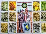 """Укфилкадра. Клубный выпуск """"Дивизия СС Галичина"""", фото №3"""