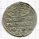 Сігізмунд 1 гріш 1529 рік Польща, фото №2