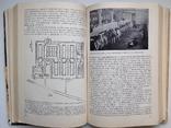 1981 Основы промышленной технологии производства продуктов животноводства, фото №10