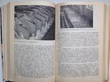 1981 Основы промышленной технологии производства продуктов животноводства, фото №11
