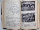 1981 Основы промышленной технологии производства продуктов животноводства, фото №2