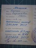 Свидетельство парашютиста. 1953 год., фото №5