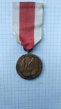 """Медаль """"За заслуги"""", фото №6"""