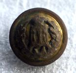 Герб, позолота, Лот 5536, фото №2