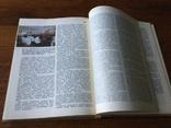 Неорганическая химия 1975 г, фото №5