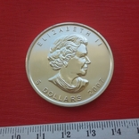 5 $ 2007 Канада унция 999,9 пробы, фото №5