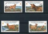 Гернси 1980 козы, овцы, фото №2