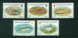 Гернси 1985 рыбы, фото №2