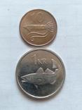 Монеты Исландии 2 штуки, фото №2