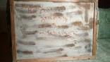 """Художник Петр Антип, картина """"Стоунхедж"""", 48х65 см, масло, холст, фото №3"""