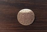 Гданський солід 1579., фото №9