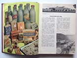 1962 Молочная пища., фото №11
