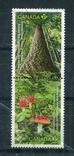 Марка гашеная Канада деревья лес природа, фото №2