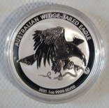 Новинка Австралийский клинохвостый орел 2021 Серебро 1oz 999,9, фото №2