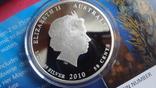 50 центов 2010 Австралия Морской конек Цветная Сертификат Коробка серебро, фото №6