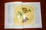 Макароны. Овощи (1994), Воениздат, фото №4