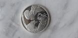 Срібна монета, фото №2