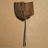 Польський старий бронзовий значок., фото №2