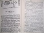 Петр Бадмаев Основы врачебной науки Тибета жуд-ши (репринт), фото №6