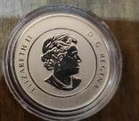 Канада 20 долларов 2011 г. Серебро. Фото через капсулу. Каонэ, фото №3