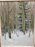 Всесоюзная художественная лотерея Зима в лесу 1966 год Сысоев Н.А., фото №7