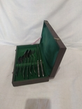 Мельхиоровый набор в упаковке, фото №6
