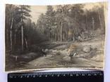 Картина лесной ручеёк начало 50-х годов, фото №2