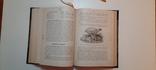 Александрова-Игнатьева.Основы кулинарного искусства 1902г, фото №11