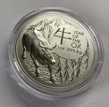 Новинка 2021 Год Быка Лунар от Royal Australian Mint, фото №4