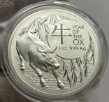Новинка 2021 Год Быка Лунар от Royal Australian Mint, фото №5
