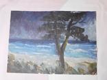 Дерево на берегу. Картон, масло. Размер 25х35 см., фото №2