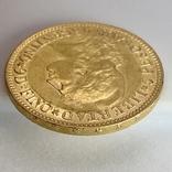 5 песо. 1887. Аргентина (золото 900, вес 8,06 г), фото №10