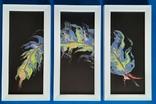 Картина/триптих/ живопис/ абстракція Fluid Art #63 acrylic, фото №4