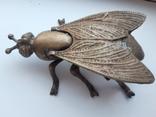 Муха бронзовая, фото №8
