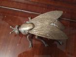 Муха бронзовая, фото №13