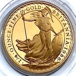 25 фунтов. 1988. Стоящая Британия. Елизавета II (золото 917, 1/4 унции), фото №7